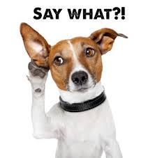 英語を聴ける耳はどうやってつくるの?